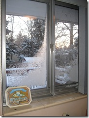 Frost climbs the windows of the kitchen on December 15, 2008