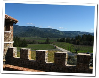Looking out at the vineyards from Castello di Amorosa.